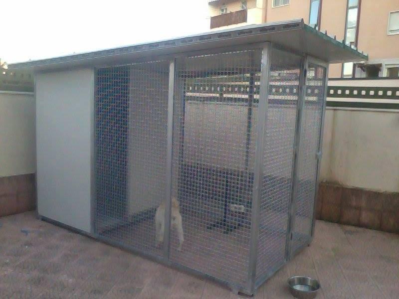 Sala Parto Per Cani : Cuccia parto trifolabianca youtube con cassa parto per cani e